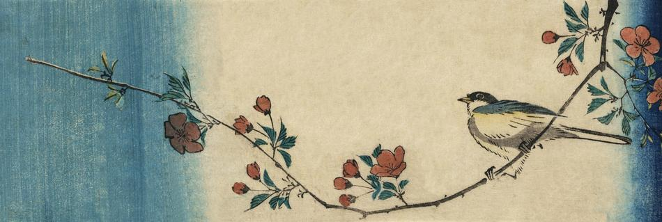 great tit on blooming branch, vintage japanese drawing