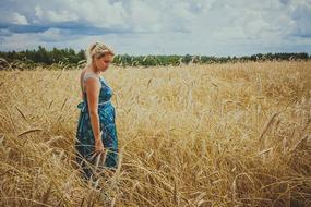 young pregnant woman in ripe field of crops at summer