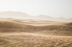 landscape of brown Desert of Sand Dunes