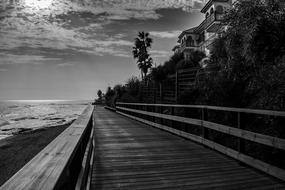 wooden Walk path with railing along seaside, Black And White
