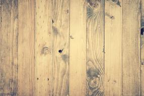 Abstract Antique Backdrop woods