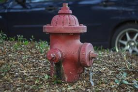 one street red Fire Hydrant