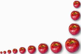 Fruits Background red apple drawing