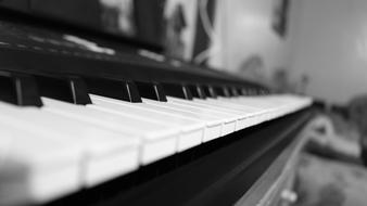 Music Keyboard Classic Black And White