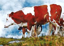 spotted cows painted on canvas on a meadow