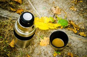 Thermos and fallen leaves on ground, Autumn