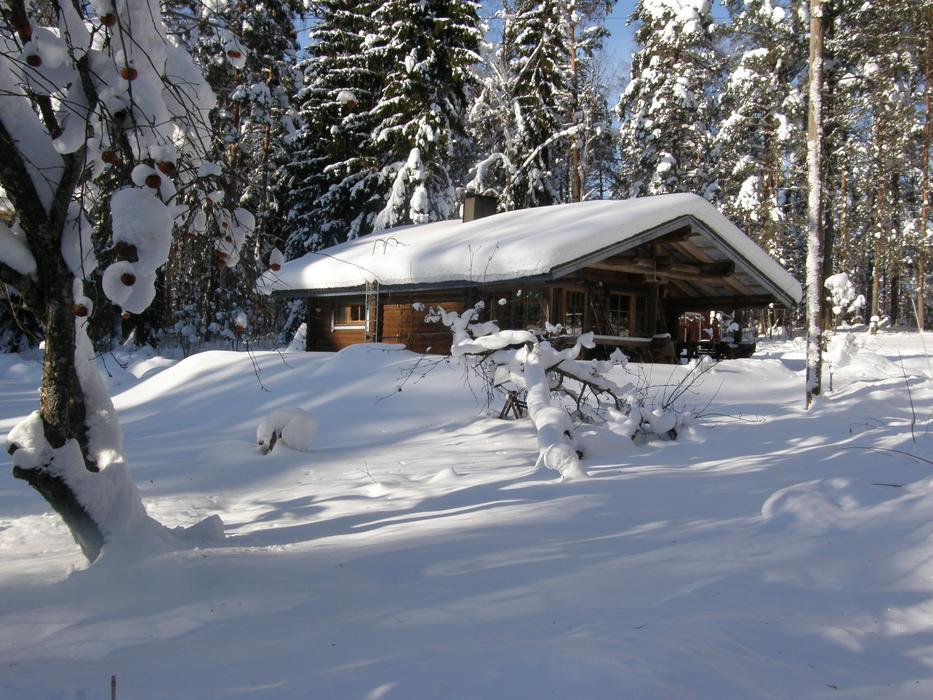 Winter landscape, wooden House covered with Snow at forest