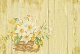background easter spring flowers drawing
