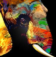 elephant abstract color drawing