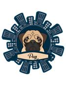 dog colored cute pug drawing