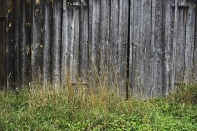 weathered wooden wall of Barn with Door