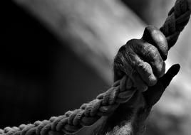 monochrome photo of a paw of a monkey holding a rope