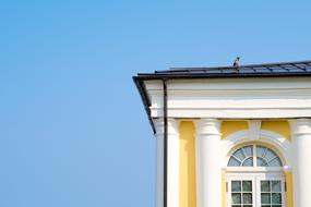 crow on the roof of a building in the style of classicism