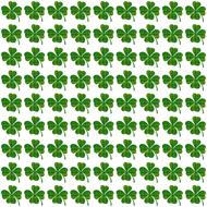 shamrocks clover leaves drawing