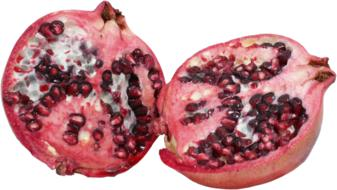 pomegranate fruit pips