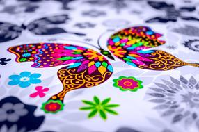 Butterfly Paint Colors