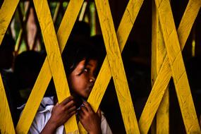 Yellow Wood Fence and girl