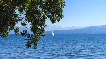 sailing ship sails in Lake Constance in Germany