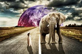 Surreal Girl and Elephant