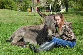 Girl Donkey green grass
